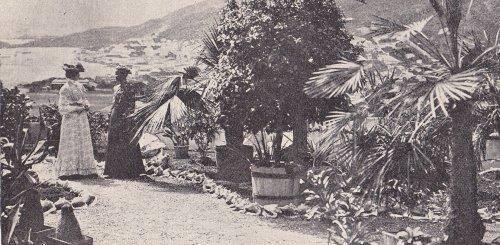 Vestindisk panorama
