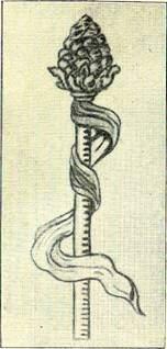 Thyrostaven