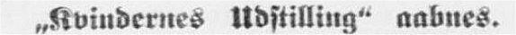 1895 06 15 Aarhus S kvindernes udstilling top