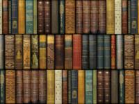 Litteraturhistorie Biografier